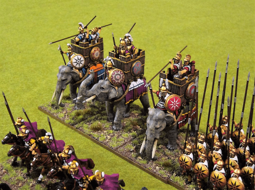 successor-elephants-aventine