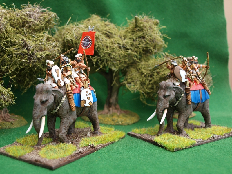 Indian elephant crews